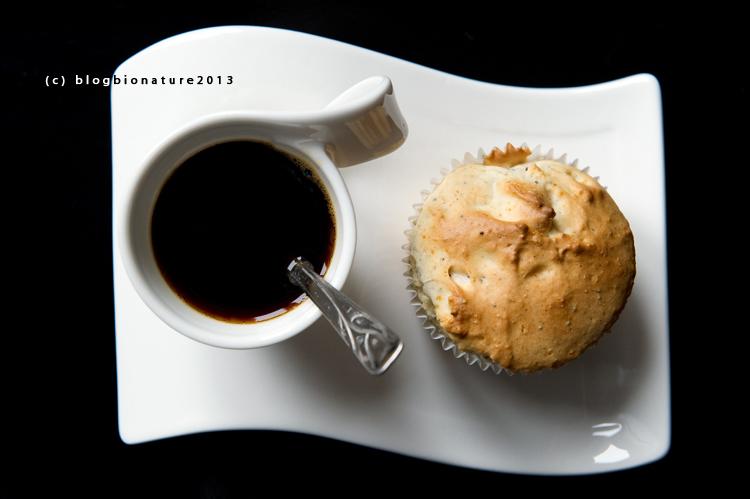 muffin vegan blogbionature.wordpress.com (1)