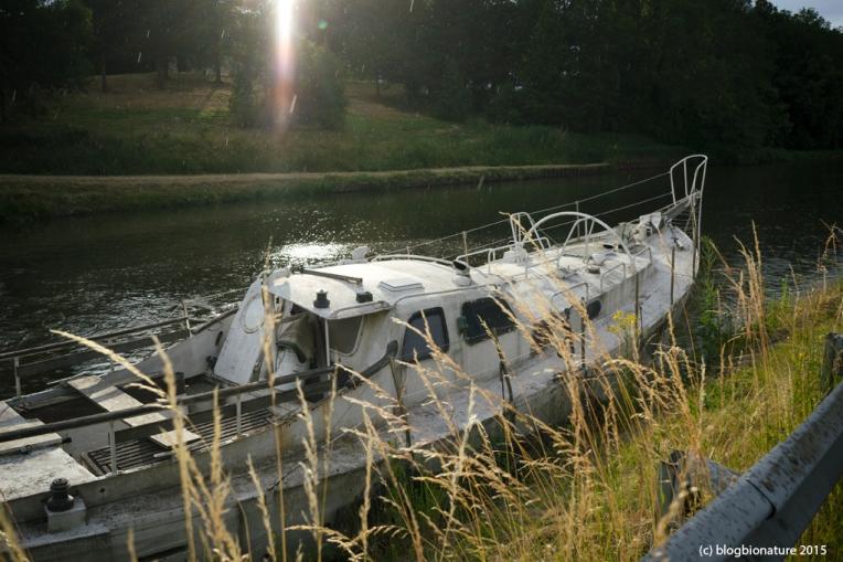 Croisière fluviale sur le canal de Digoin à Roanne. Les Canalous / 13 et 14 juin 2015
