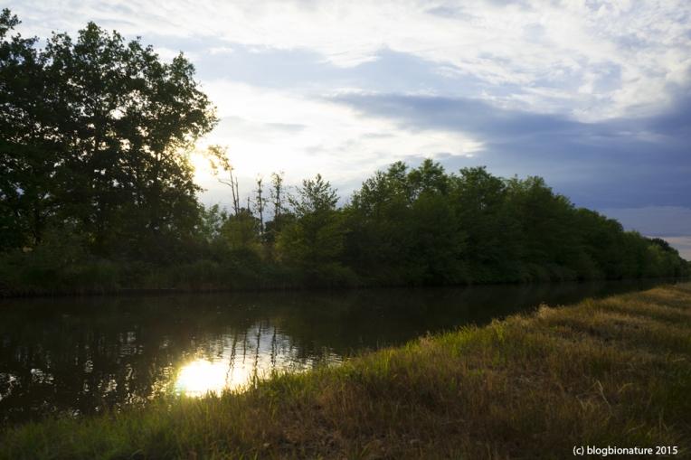 mouillage pour la nuit_blogbionature (3)